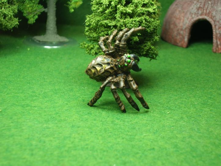 A giant poisonous spider